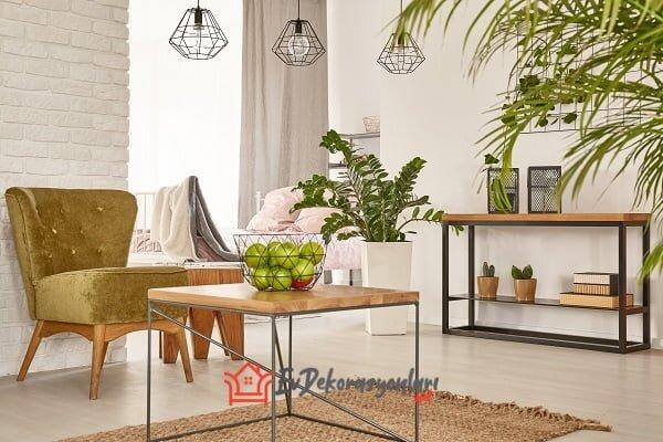 canli bitkilerle ev dekorasyon fikirleri