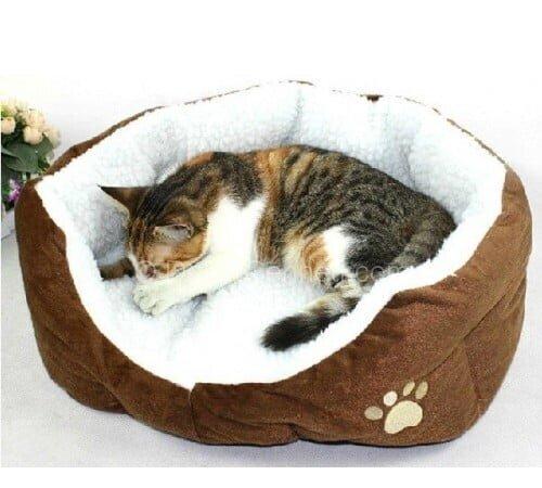 Değişik evcil hayvan yatakları Fotoğrafları