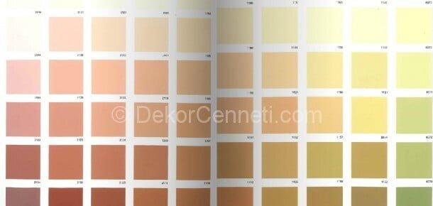 En Yeni marshall 1001 renk Resimleri