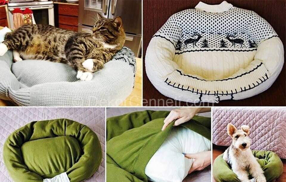 Harika evcil hayvan yatakları Görselleri
