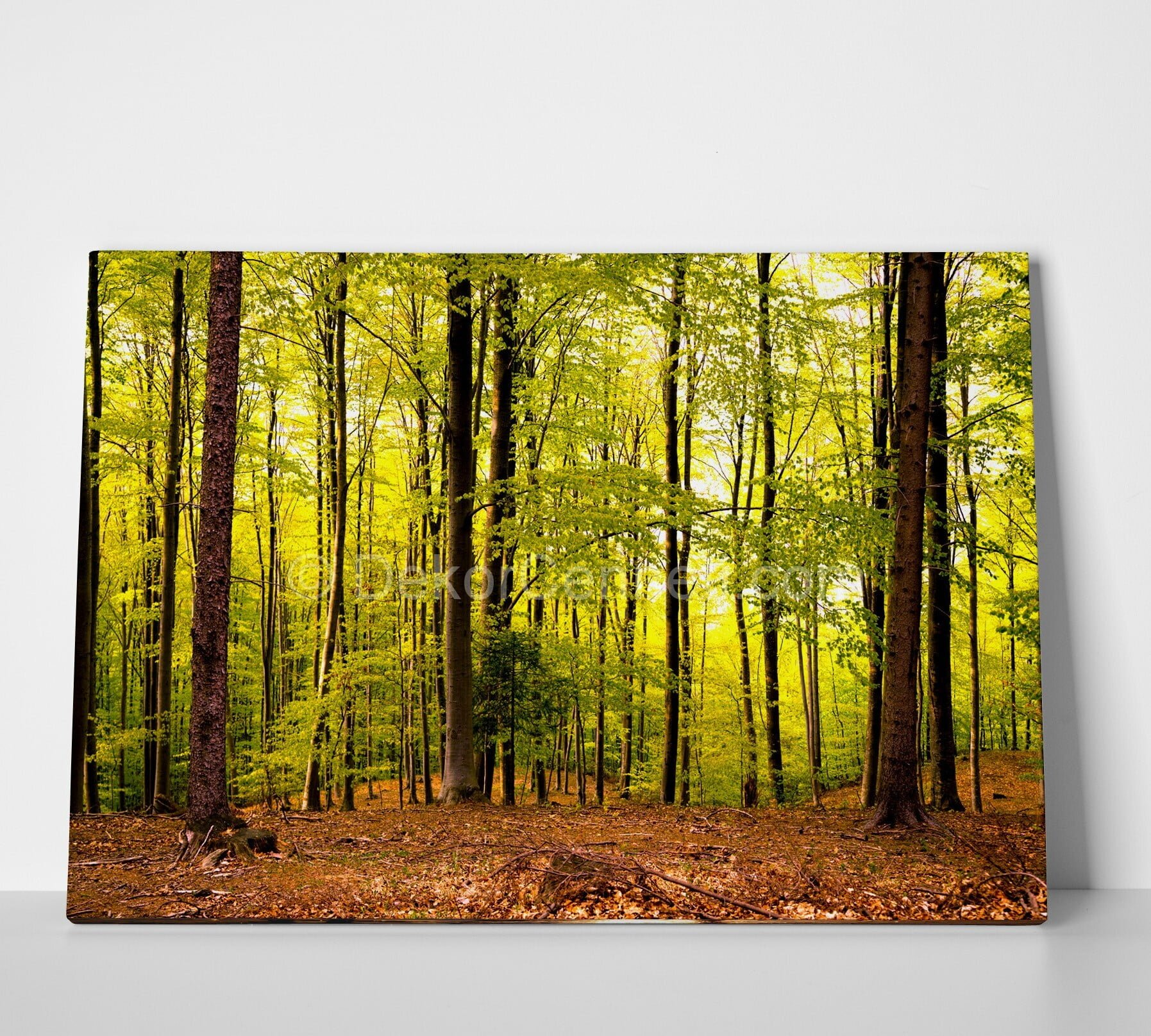 Orman Manzaralı Canvas Tablo