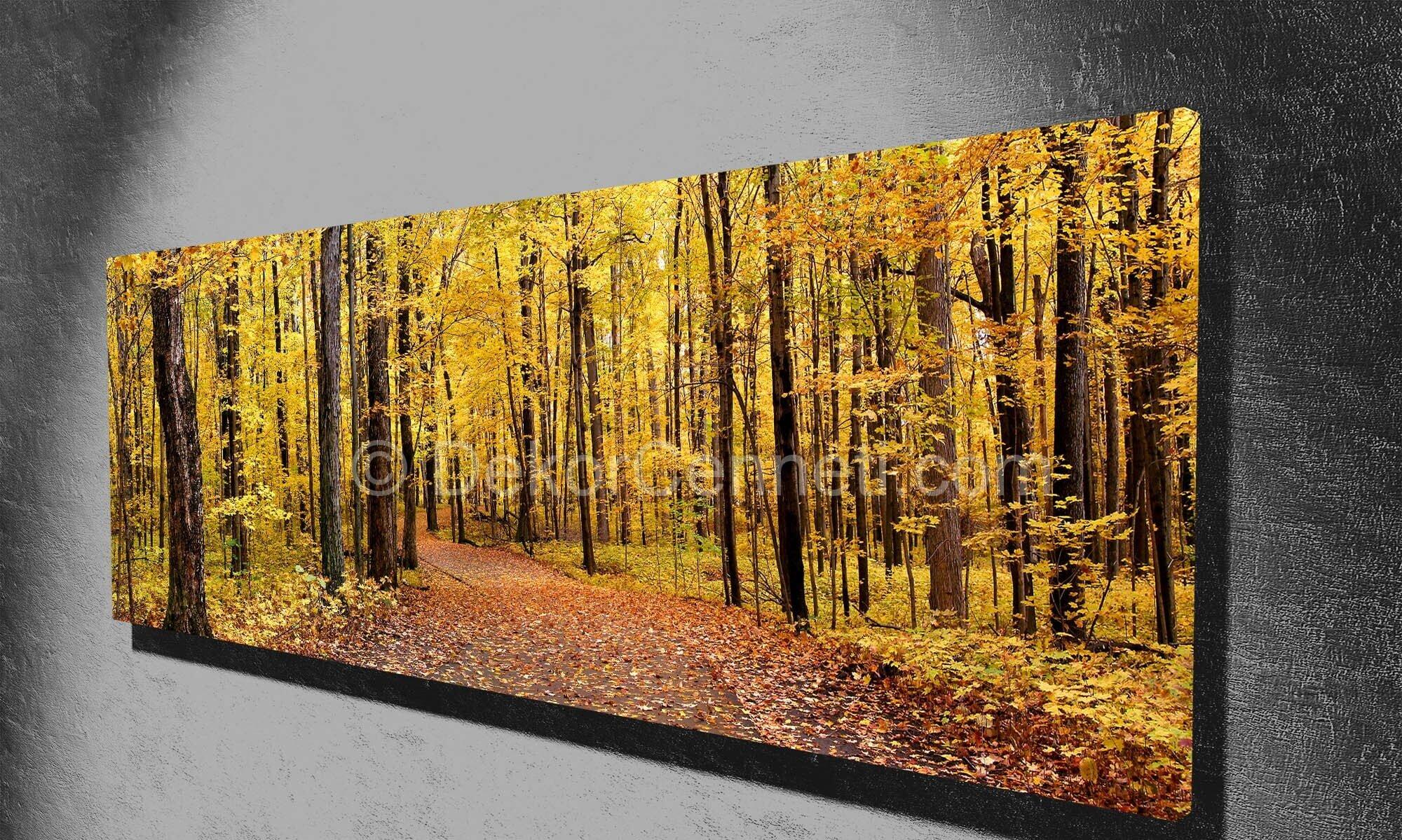 ormanda-sonbahar--2-panorama-canvas-tablo