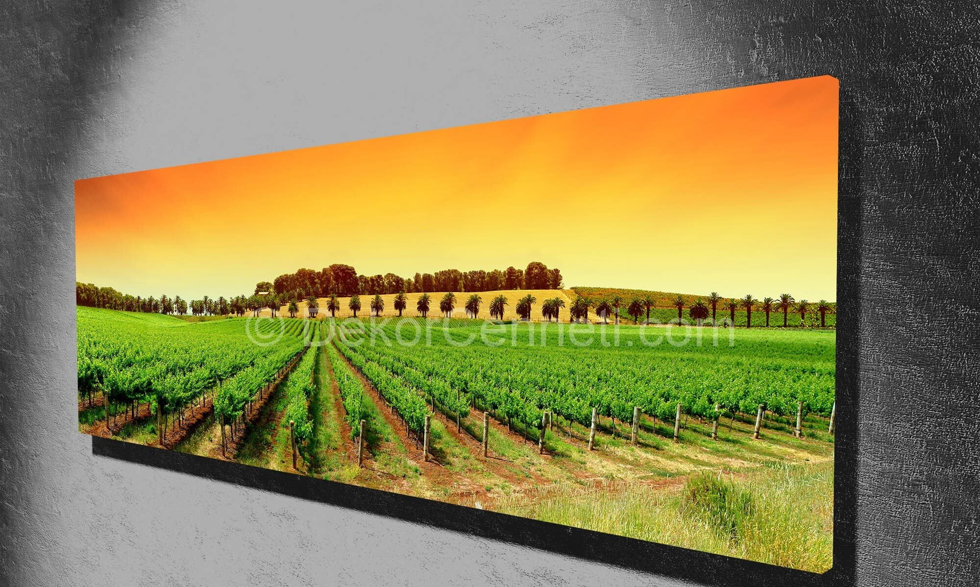 Rengarenk Tarla Temalı Panorama Canvas Tablo