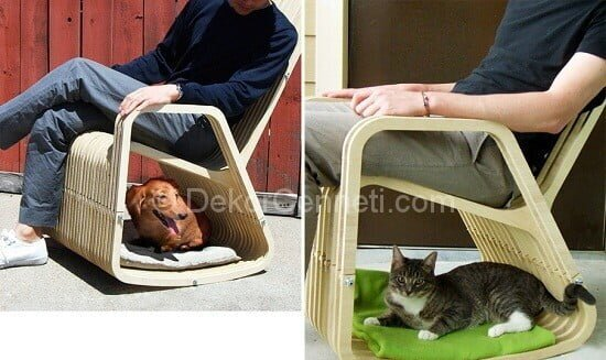 Trend evcil hayvan yatakları Fotoları