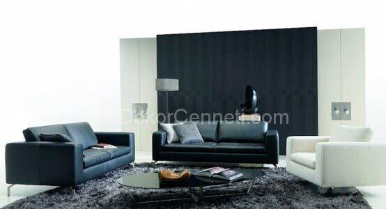 Yeni gri koltuk ile uyumlu halı Resimleri