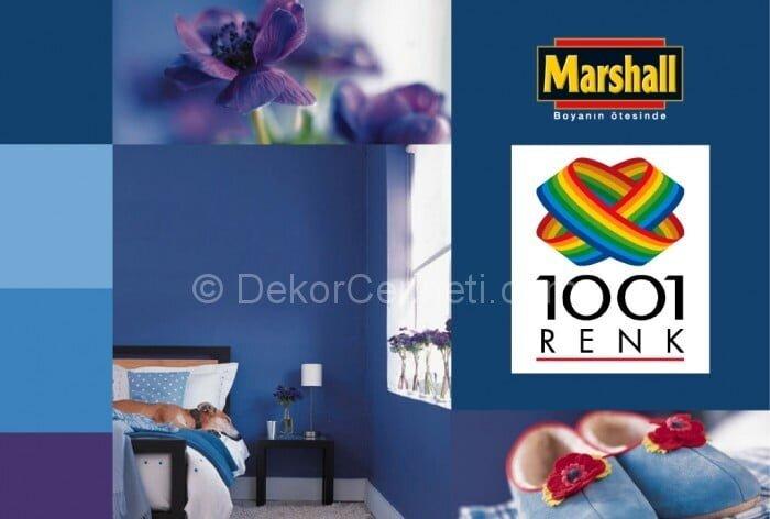 Yeni marshall 1001 renk fiyat Resimleri